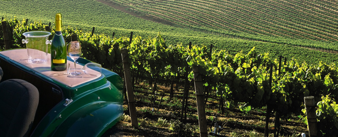 winery tours in nortfolk limo